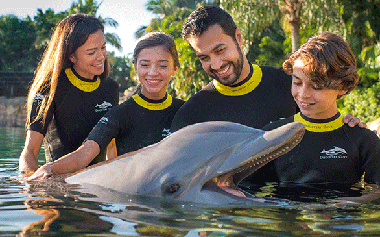 Experience Discovery Cove in Orlando Florida