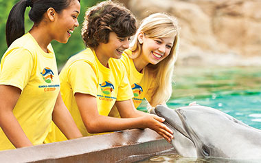 SeaWorld Orlando Educational Day Camps