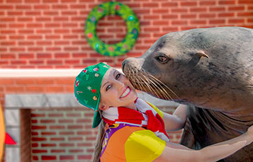 Sea Lion High The Christmas Special at SeaWorld Orlando