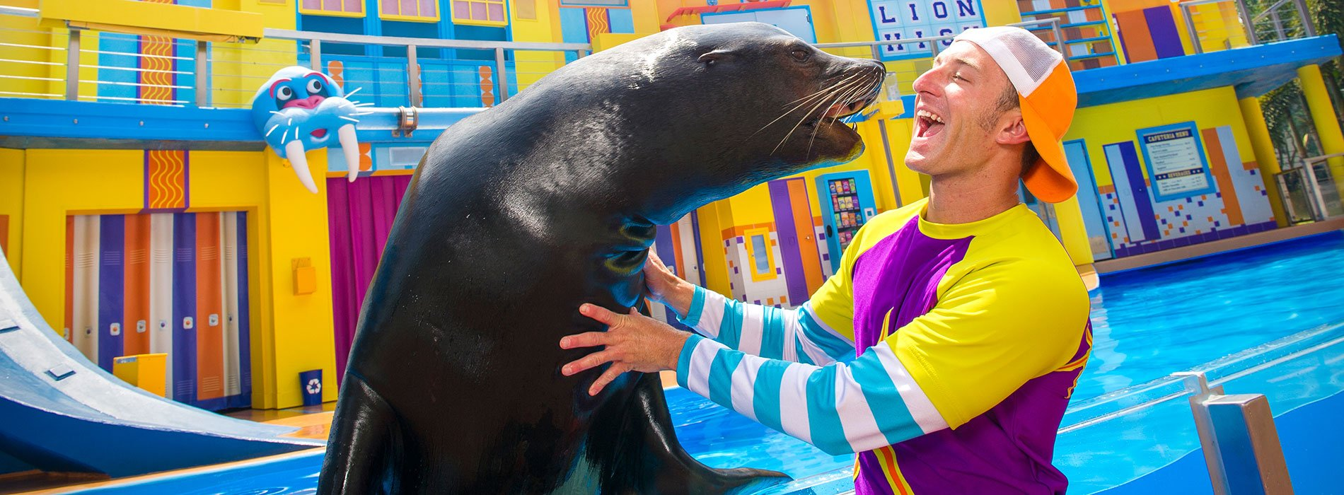 Clyde & Seamores Sea Lion High