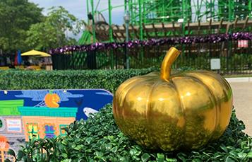 Golden Pumpkin Scavenger Hunt
