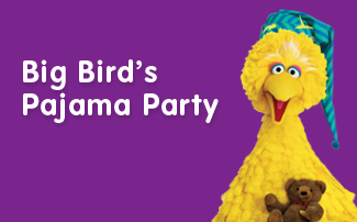 Big Birds Pj party