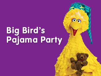 Big Birds Pj party