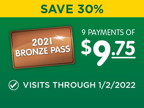 Bronze Pass - Save 30%