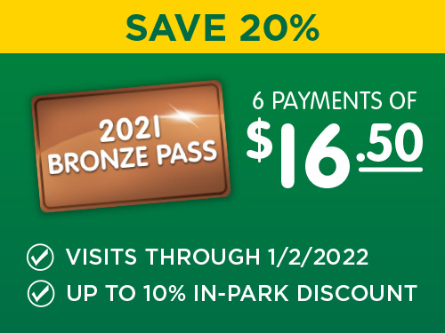 Bonze 6 Month Pass