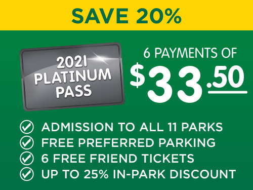 Platinum 6 Month Pass