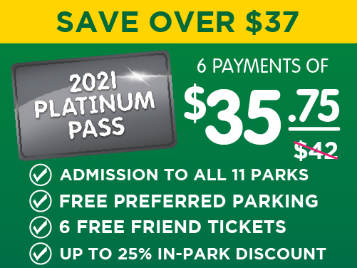 Sesame Platinum Bronze Pass