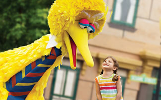 Big Bird and Girl