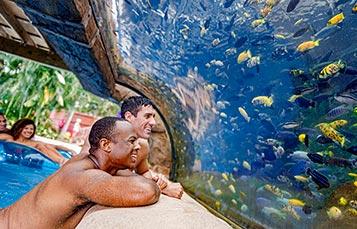 Fish Grotto at Aquatica Orlando
