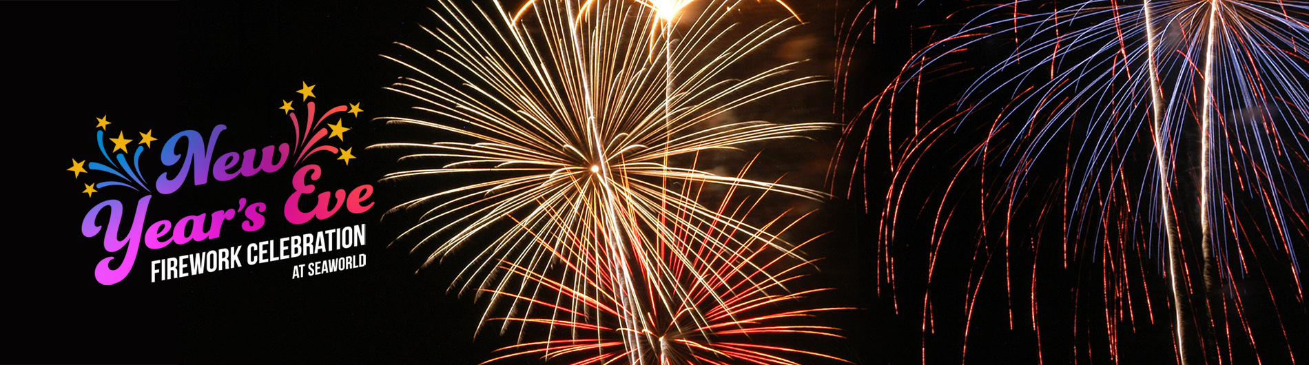 Enjoy New Years Eve Fireworks at SeaWorld San Antonio