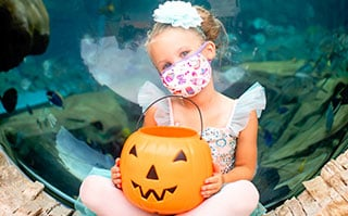 little girl in ballerina costume at SeaWorld San Antonio's Spooktacular
