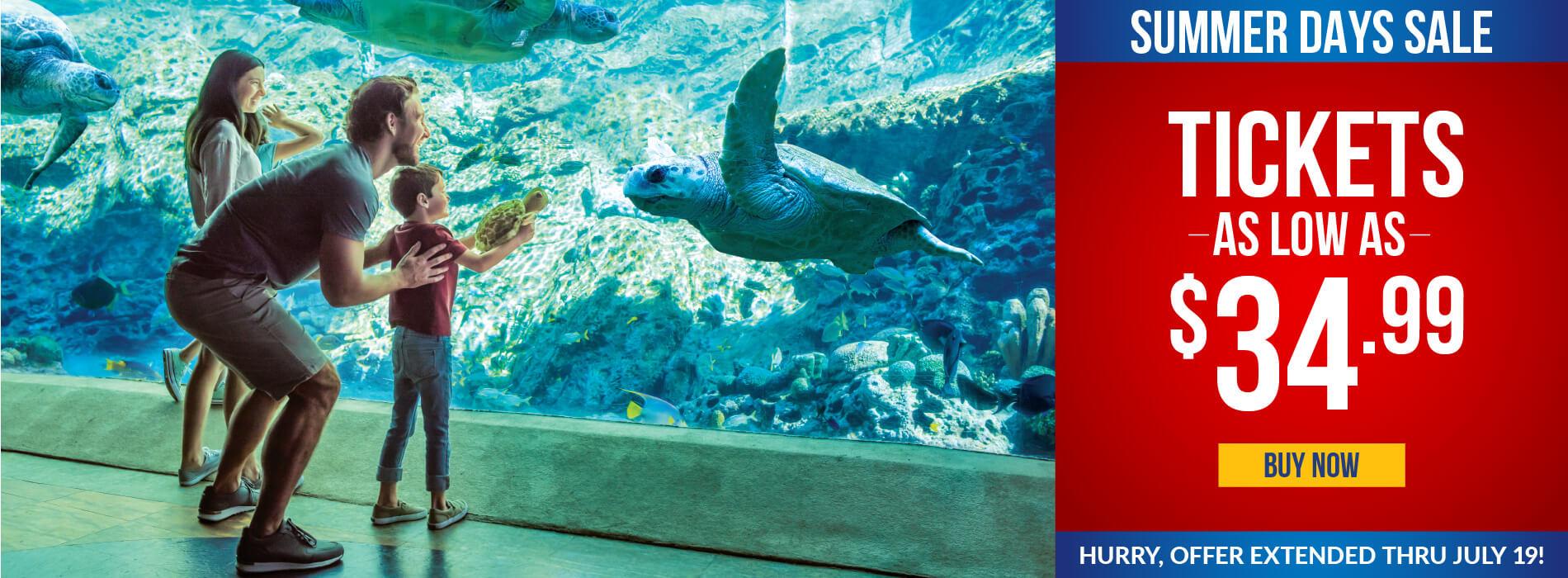 SeaWorld San Antonio Ticket Sale