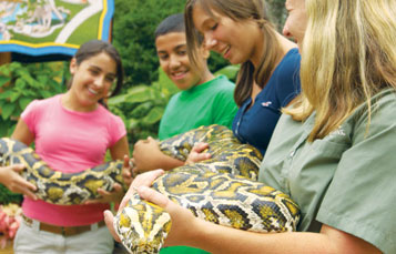 Marine Zoo Camp