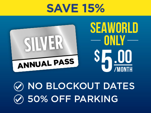 SeaWorld San Antonio Silver Pass