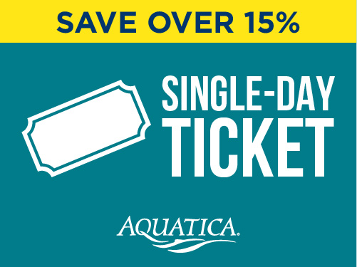 Single-Day Ticket