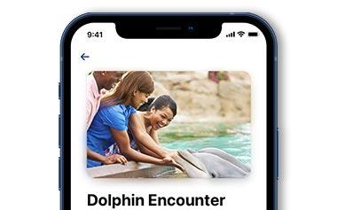 SeaWorld Orlando Mobile Park App