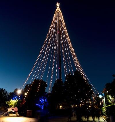 Christmas Celebration Skytower Tree