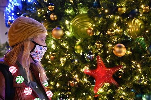 Christmas Celebration at SeaWorld San Diego