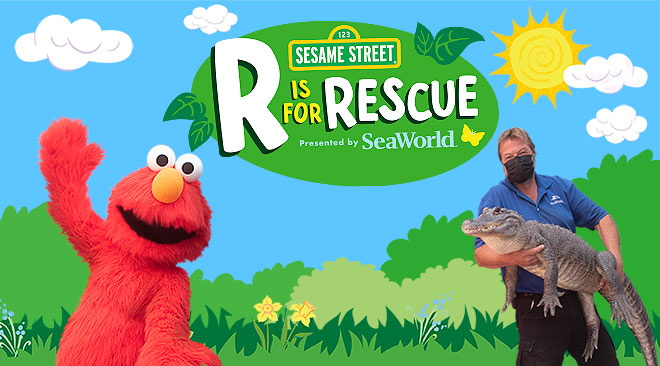 R is for Rescue at SeaWorld San Diego