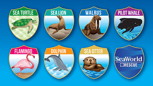 Scavenger hunt stickets at SeaWorld San Diego