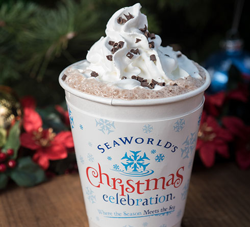 Hot Chocolate at SeaWorld San Diego Christmas Celebration