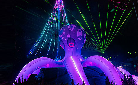 Laser Reef
