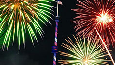 Fireworks at SeaWorld San Diego