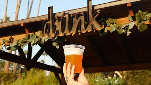 Fall-flavored Food Brews and Cocktail at SeaWorld Spooktacular