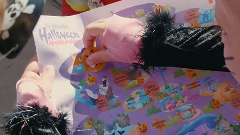 SeaWorld Spooktacular Pumpkin Scavenger Hunt