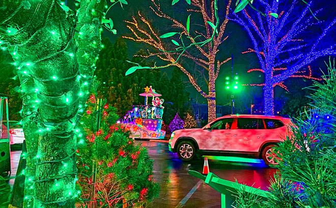 Parade of Lights