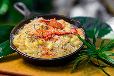 Lobster mac and cheese at Seven Seas Food Festival at SeaWorld San Diego