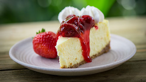 photo of cheesecake at SeaWorld San Diego