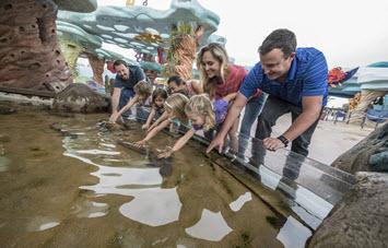 Family Adventure Tour at SeaWorld San Diego