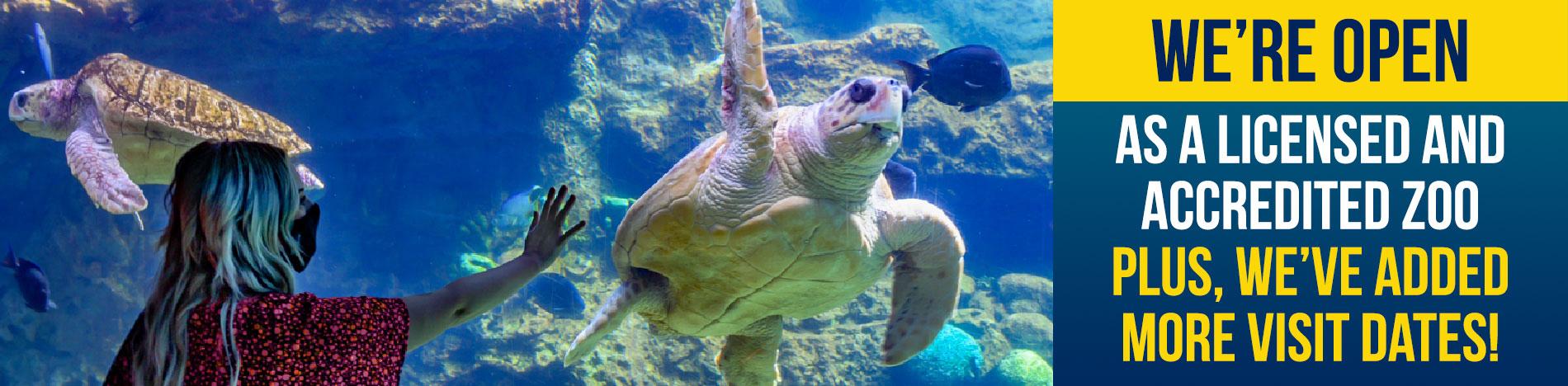 SeaWorld San Diego is open