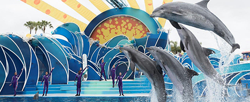 Attractions Page Show Image