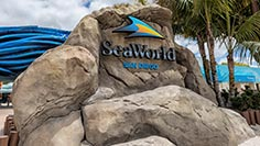 San Diego Events Seaworld San Diego Event Schedule Seaworld San Diego