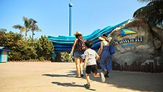Reserve your day at SeaWorld San Diego