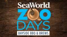 Zoo Days Baysdie BBQ and Brews at SeaWorld San Diego
