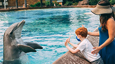 SeaWorld San Diego Animal Encounter