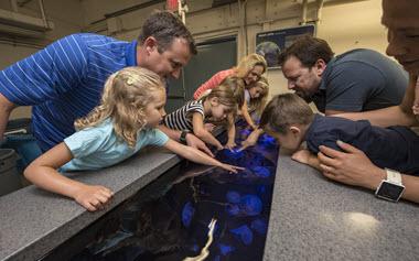 SeaWorld San Diego Tour