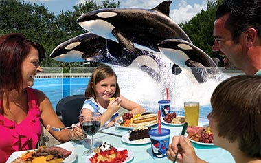Product Image Dine with Orcas