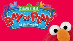 Sesame Street Bay of Play at SeaWorld San Diego