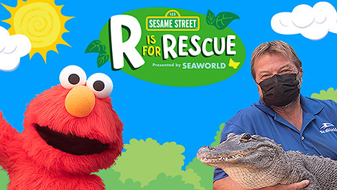 R is for Rescue presentation at seaworld san diego