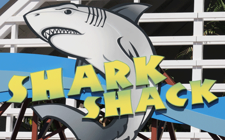 Shark Shack Gift Shop at SeaWorld San Diego