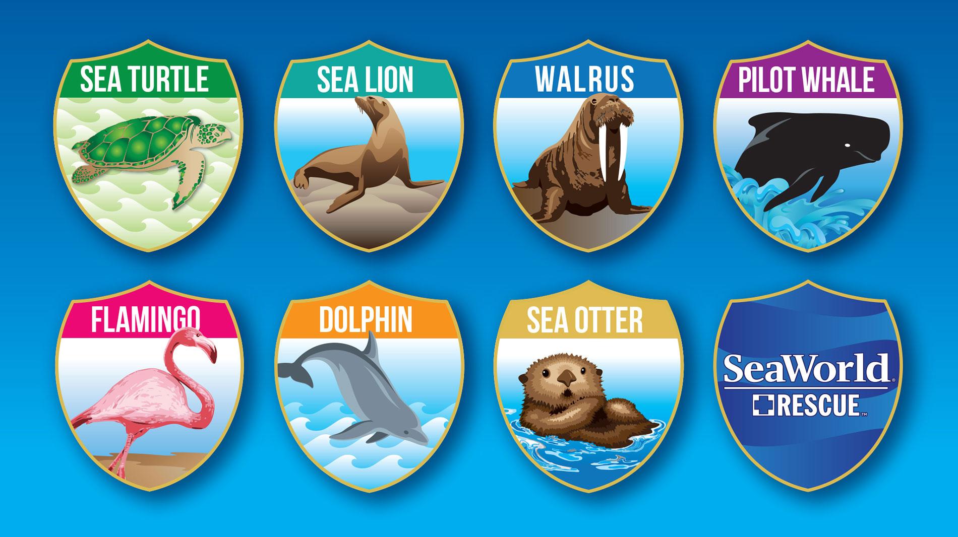 Animal Rescue Scavenger Hunt at SeaWorld San Diego