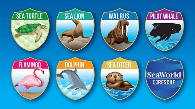 Animal Rescue Scavenger Hunt at SeaWorld San Diego