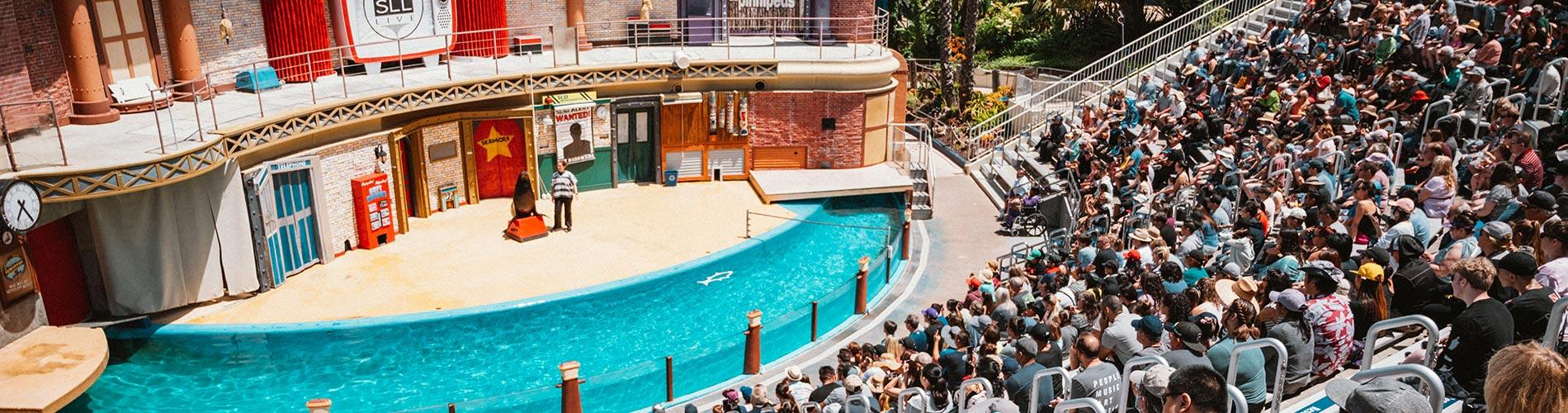 Sea Lion Live at SeaWorld San Diego