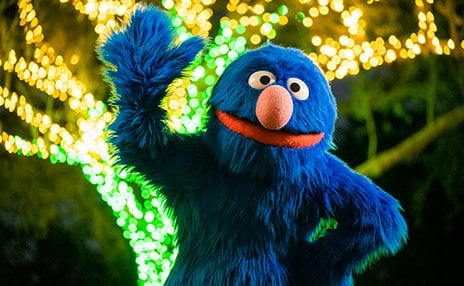 Meet Grover at SeaWorld San Diegos Christmas Celebration