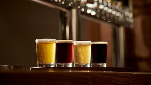 Craft Beers at Bier Fest