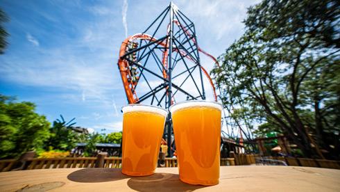Bier Fest at Busch Gardens Tampa Bay